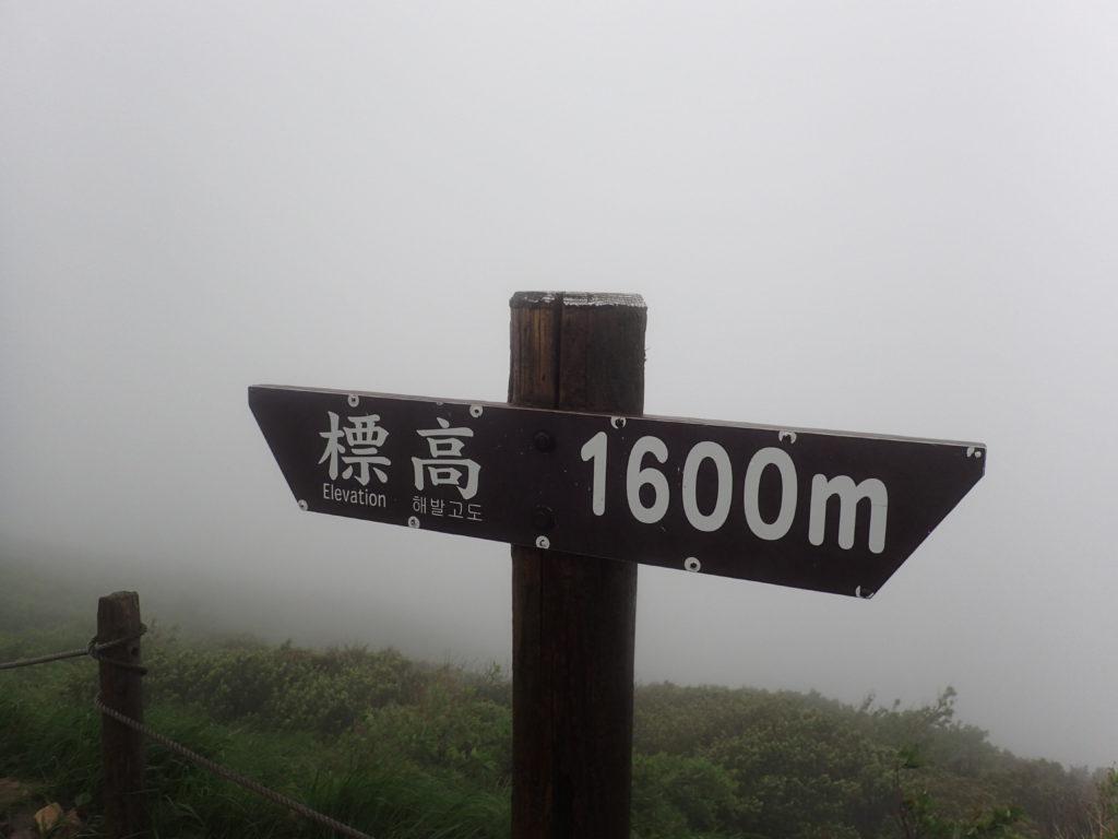 大山の標高1600m地点