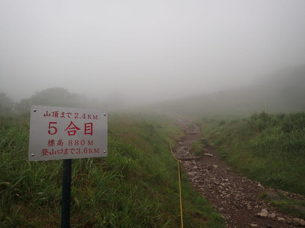 伊吹山5合目から霧に包まれた山頂方向を見上げる