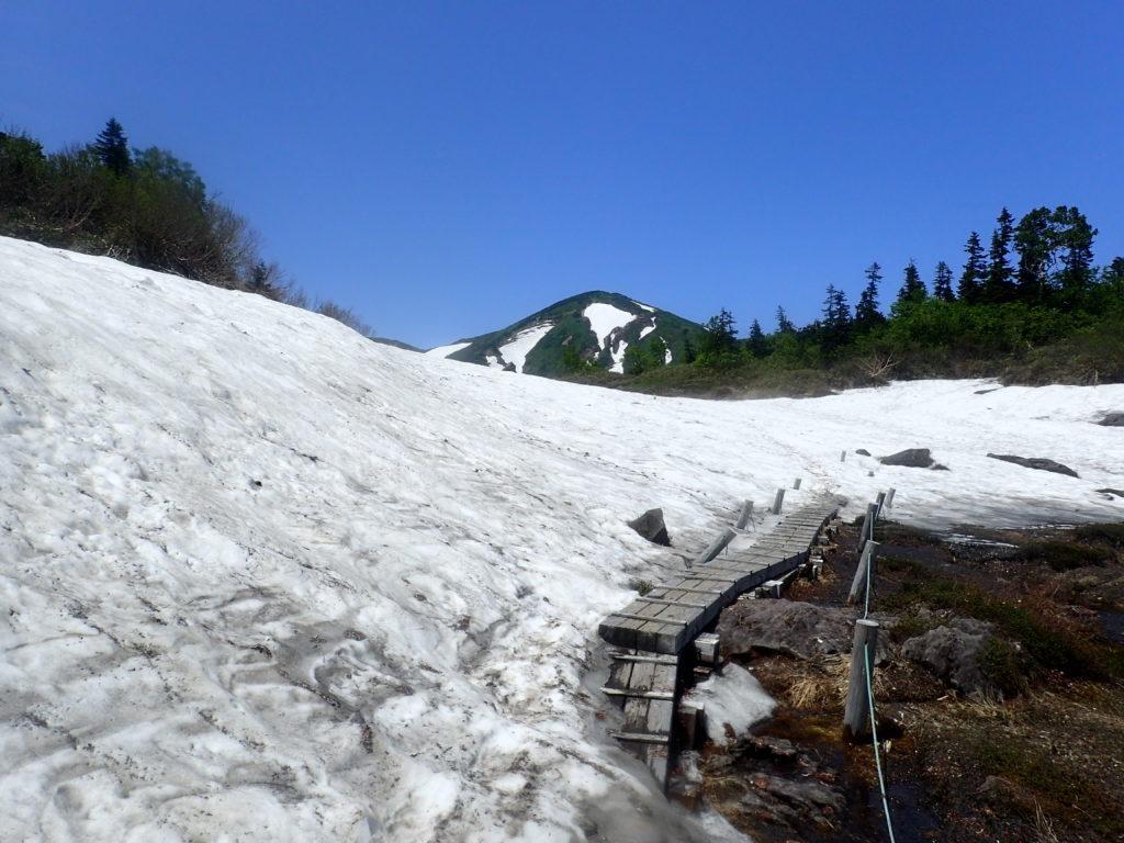 火打山登山道の天狗の庭付近の残雪