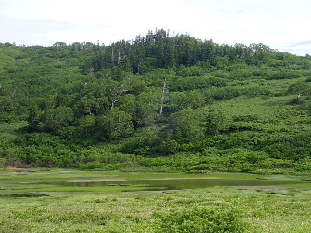 妙高山登山道にある黒沢池