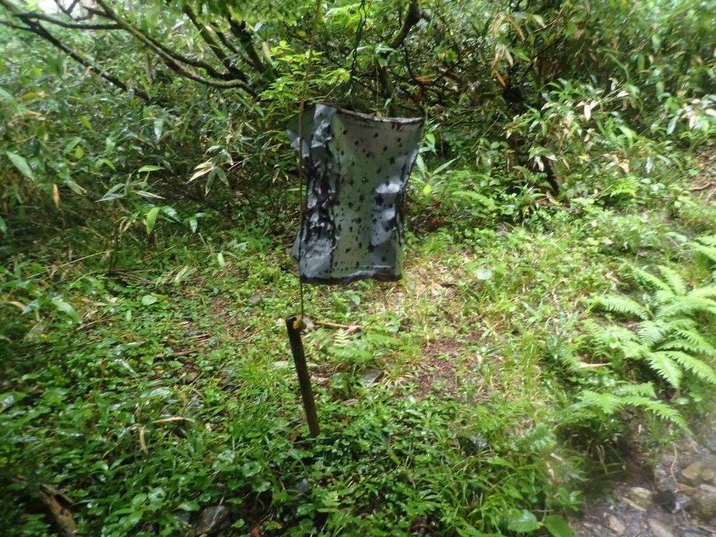 早池峰山の小田越コース登山道にあるクマよけ