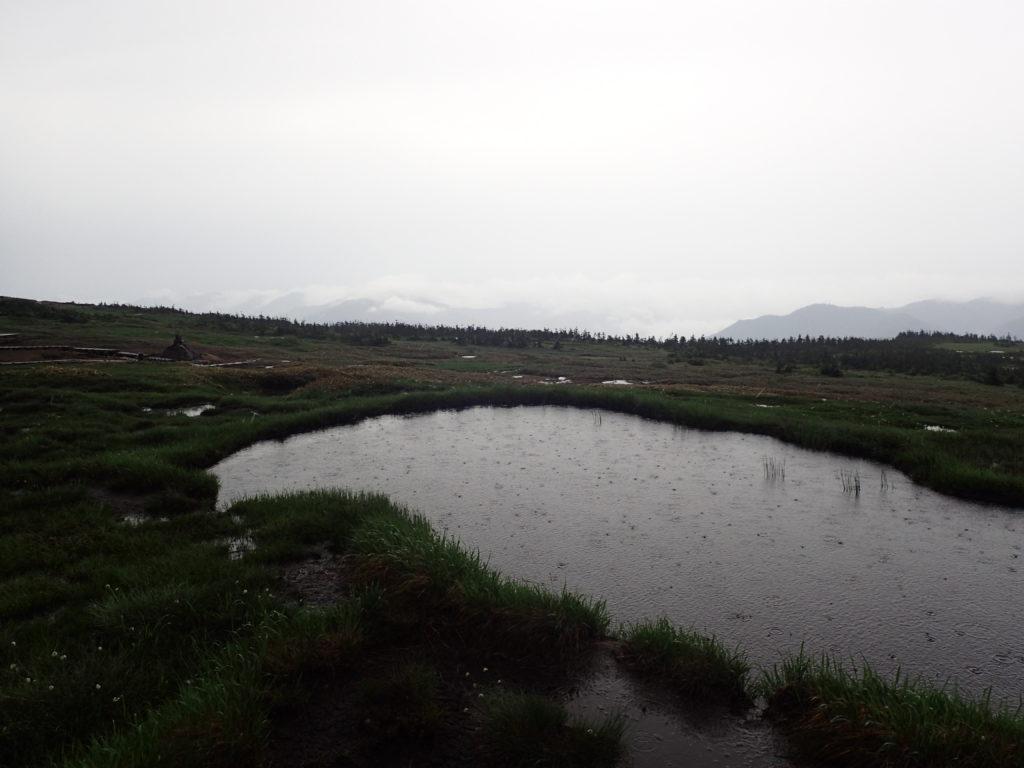 苗場山山頂付近の池