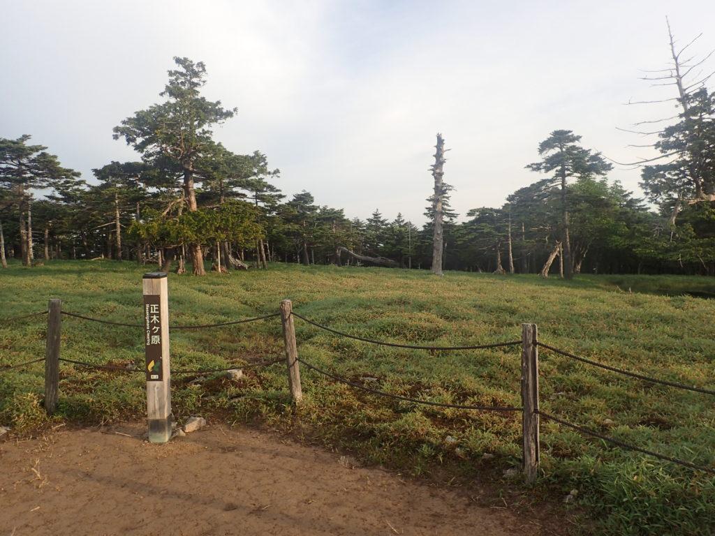 大台ヶ原山の正木ヶ原