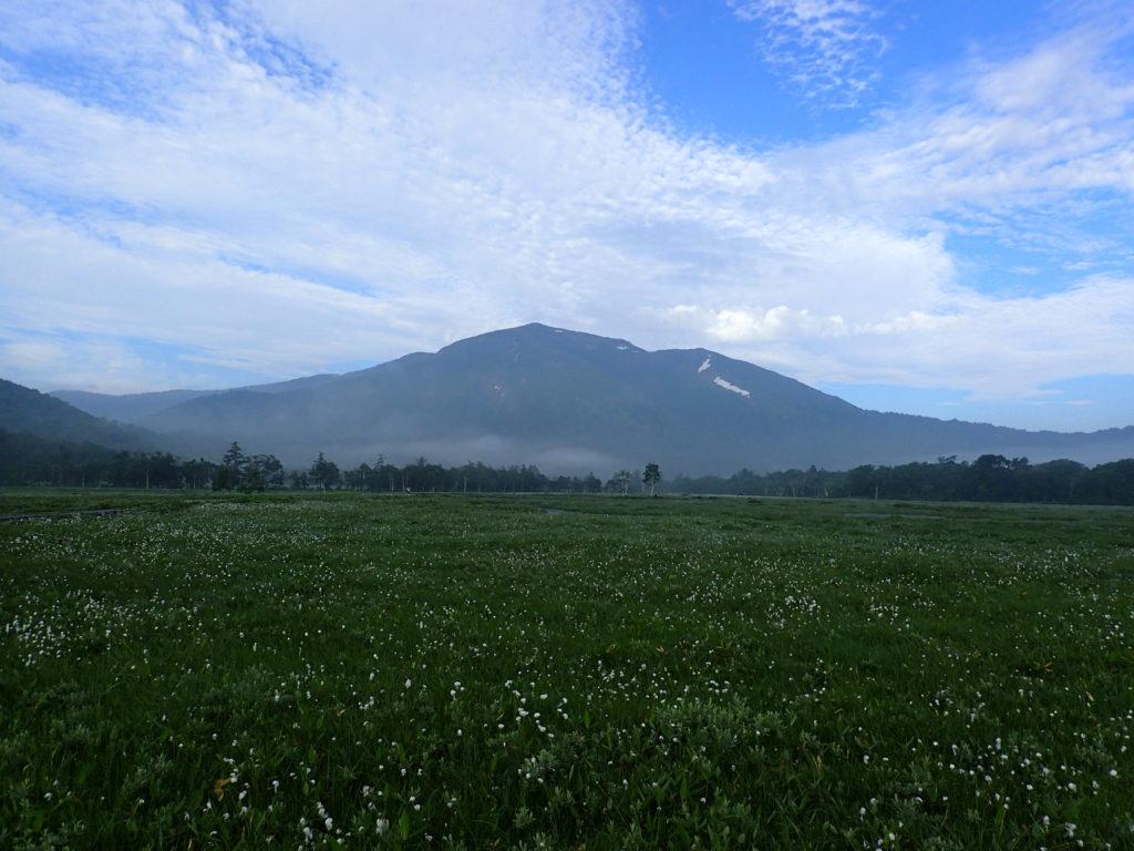 尾瀬から見る至仏山