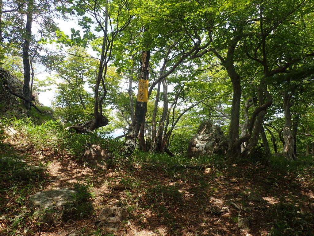 大峰山の石休ノ宿跡
