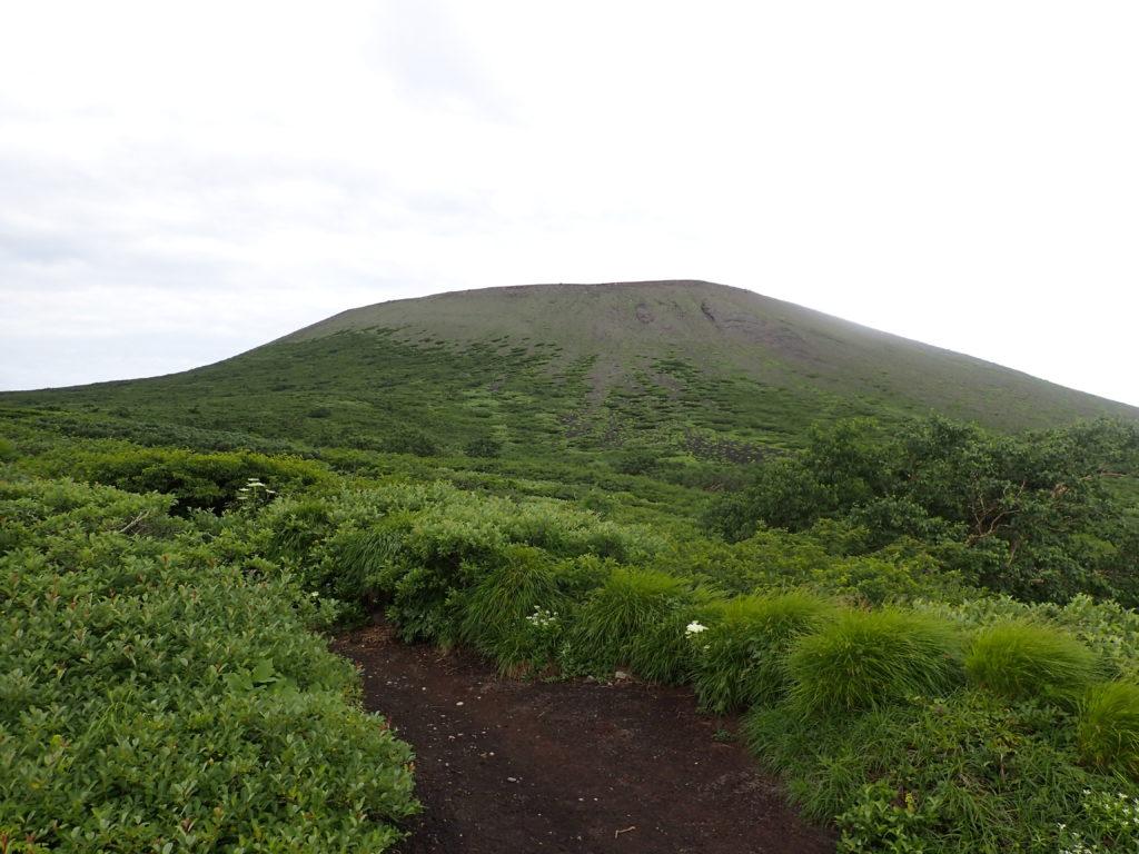 岩手山8合目付近から見上げる山頂方向