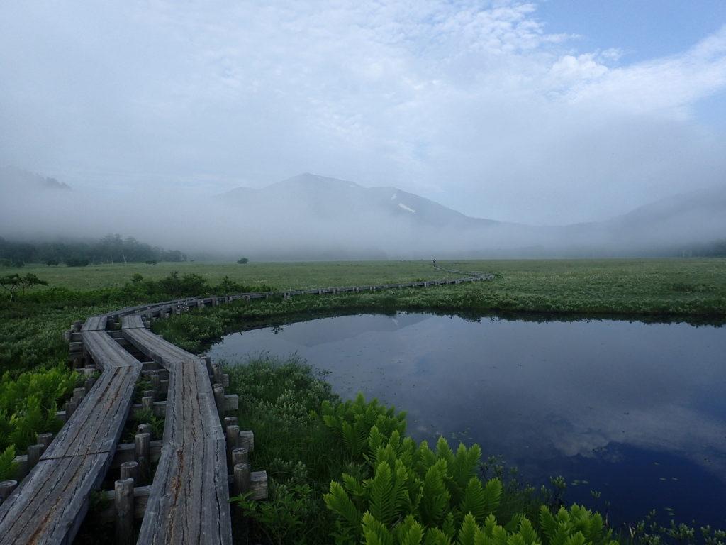 尾瀬の木道から見る池塘と至仏山