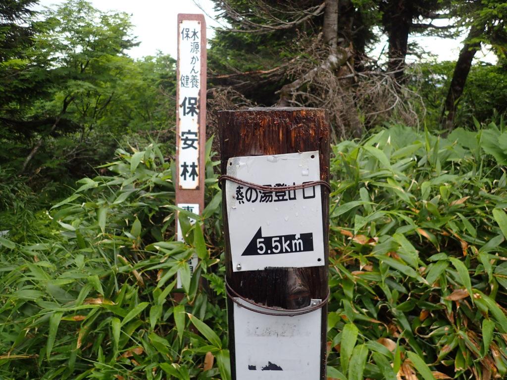 八幡平からの蒸の湯ルート入口