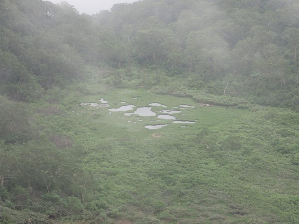 妙高山登山道(大倉尾根)からみる長助池