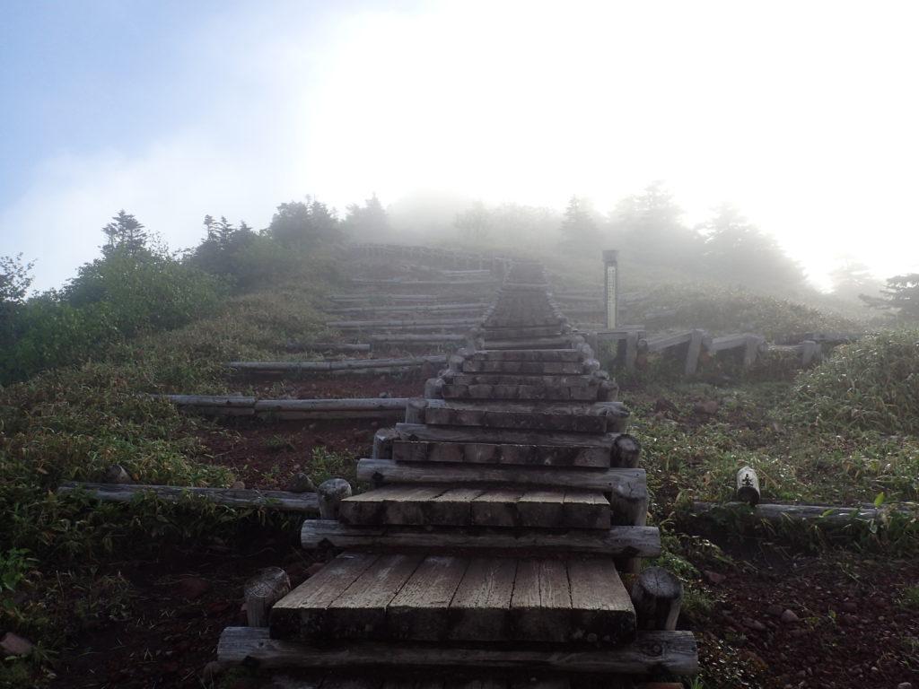 四阿山の山頂に続く木道