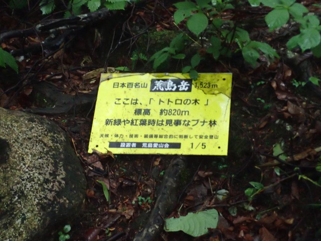荒島岳のトトロの木の看板