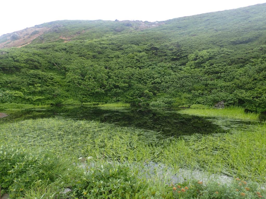 八甲田山の鏡沼