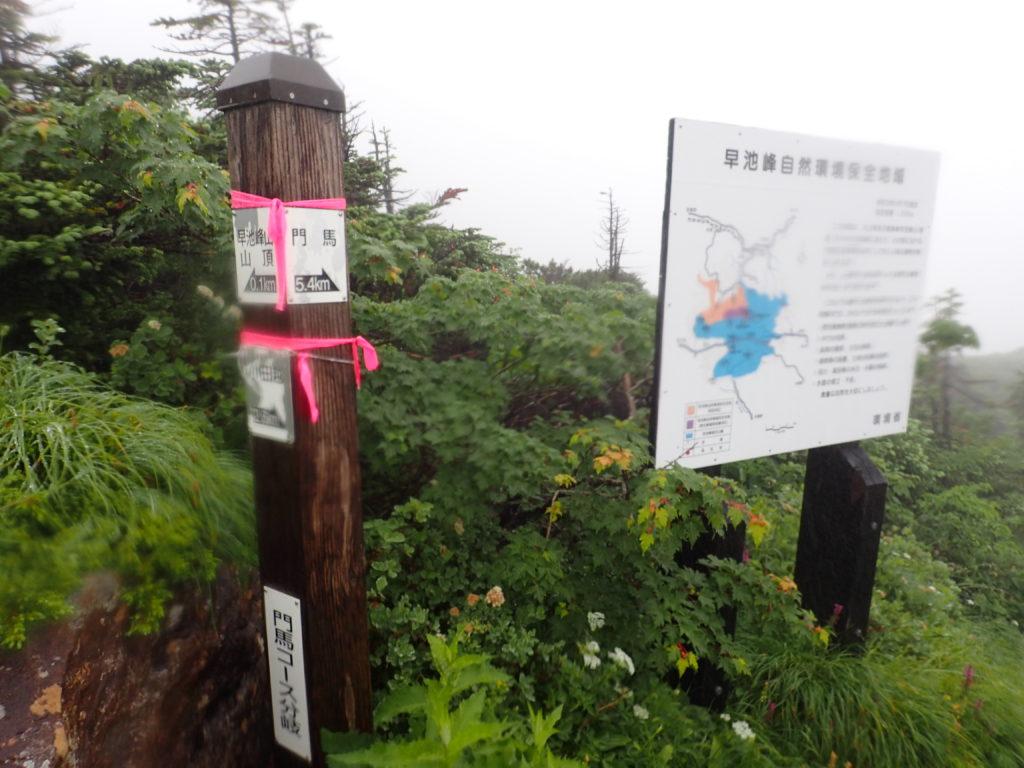 早池峰山の山頂と門間コースの分岐