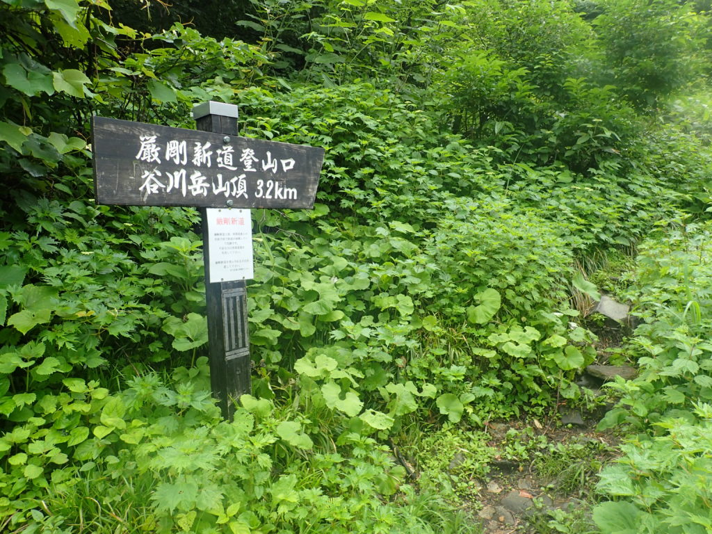 谷川岳の巌剛新道登山口