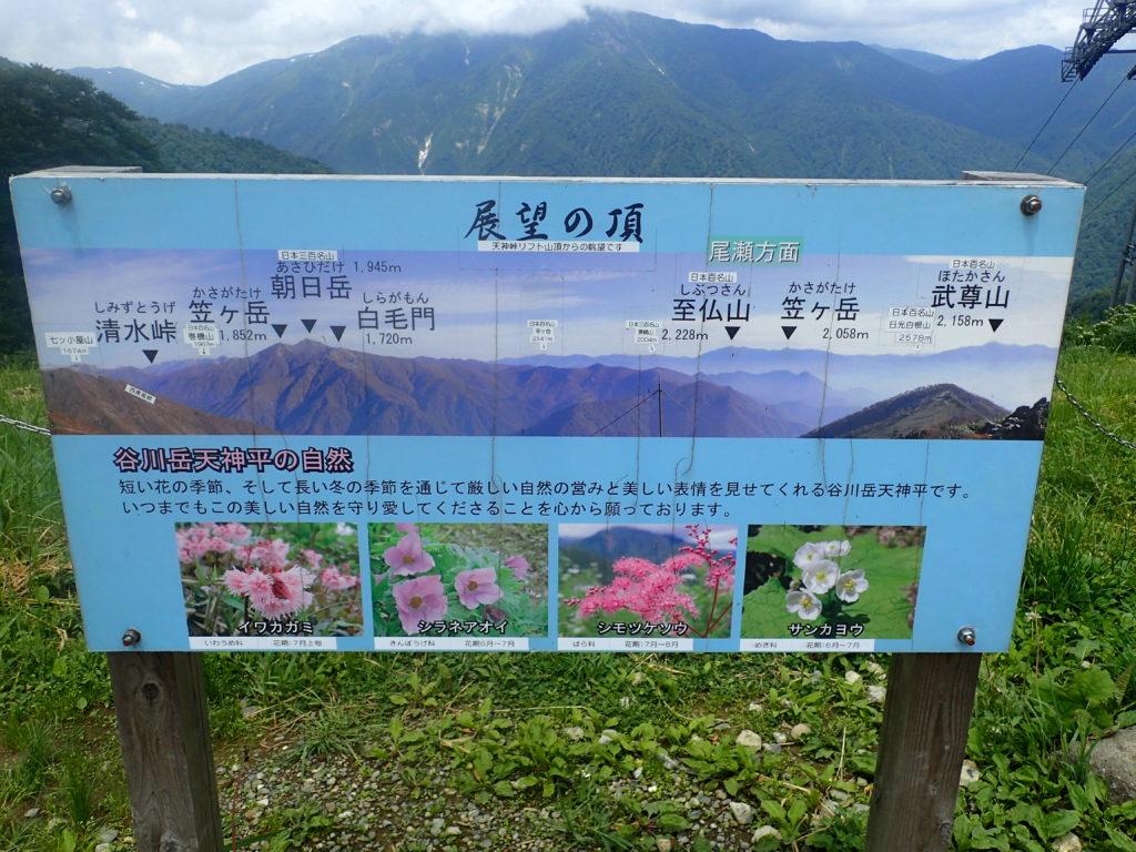 谷川岳の天神平からの眺めの案内