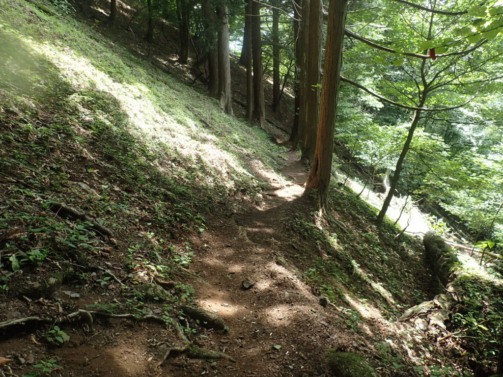 両神山の日向大谷口ルート登山道