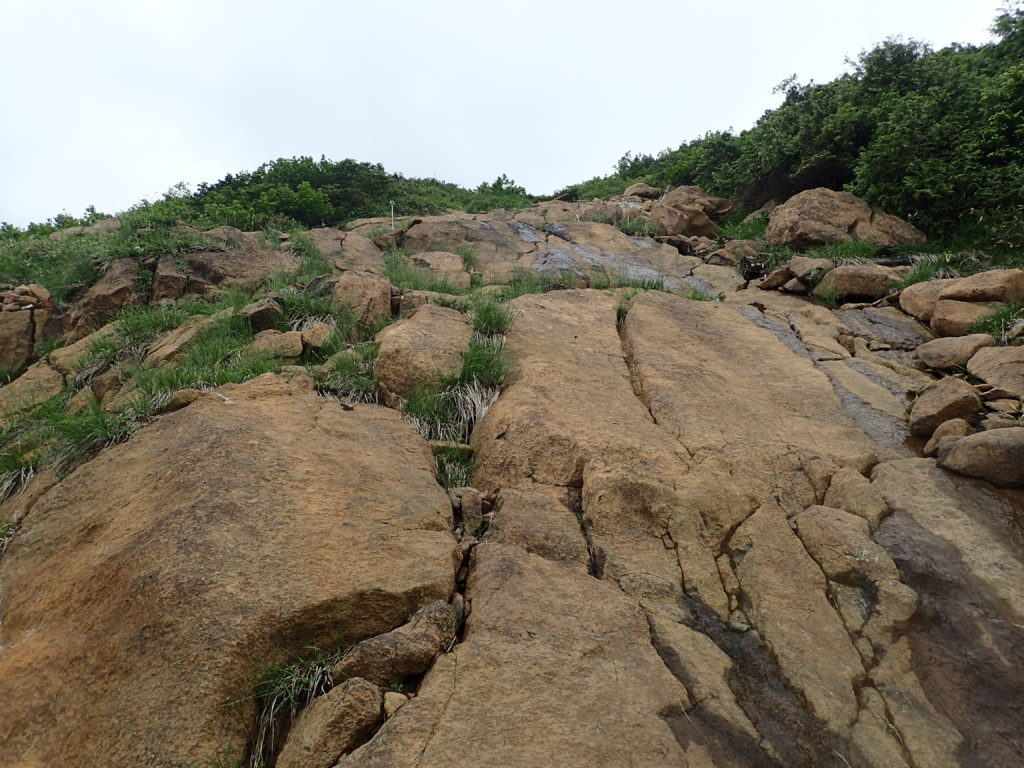 至仏山の東面登山道の蛇紋岩