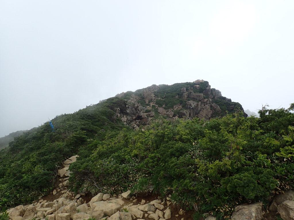 至仏山と小至仏山を結ぶ登山道
