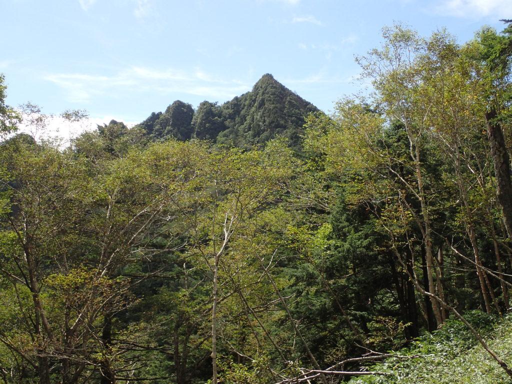 不動沢のコル付近から見る鋸山