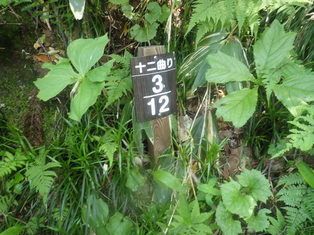 火打山登山道にある十二曲りの看板