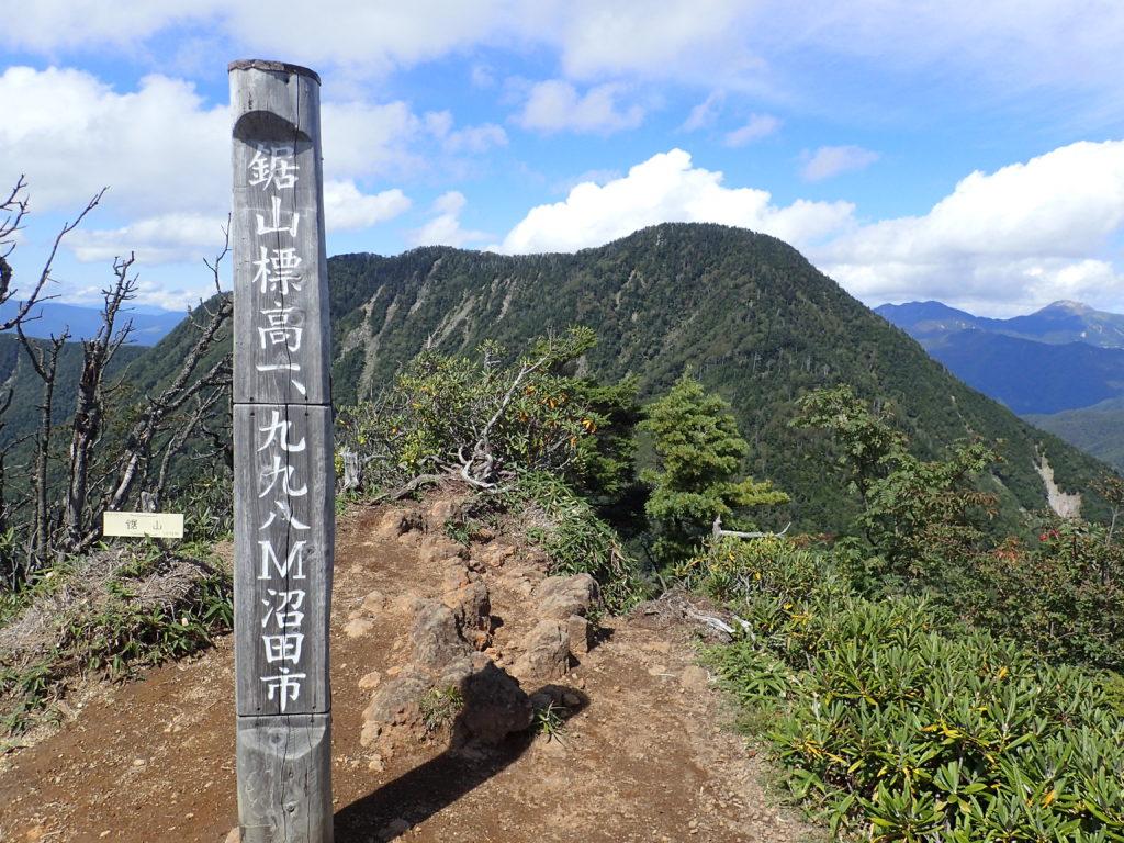 鋸山から見る皇海山