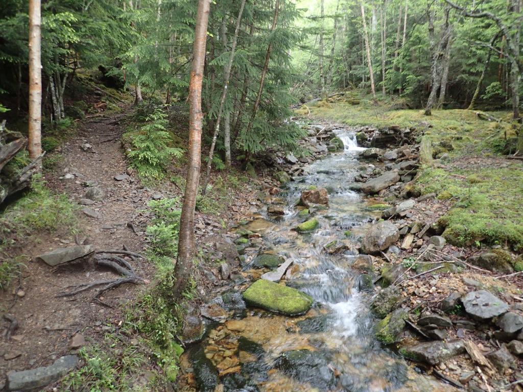 水源地に近い千曲川と甲武信ヶ岳の登山道