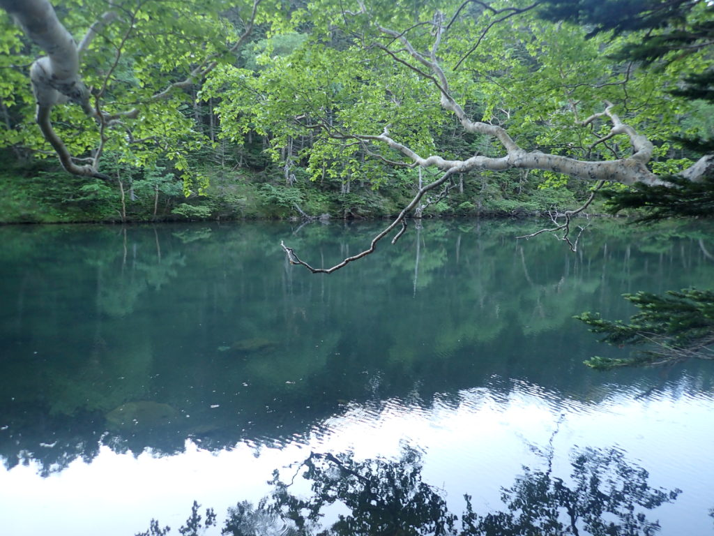日光白根山の弥陀ヶ池