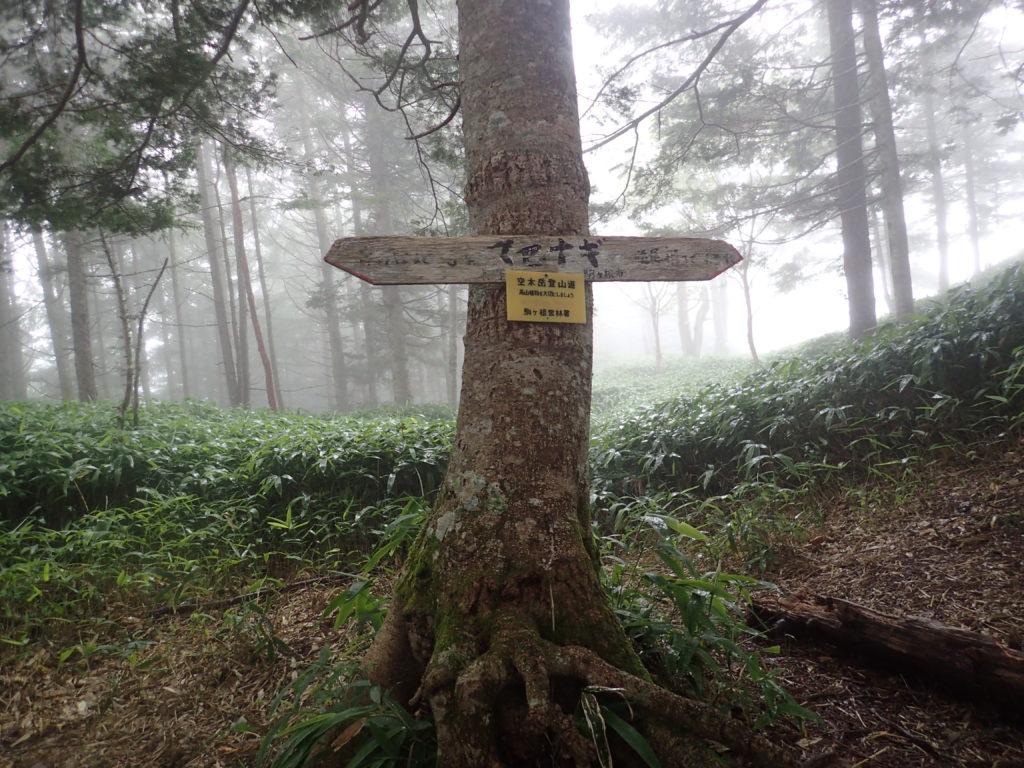 空木岳登山道のマセナギ