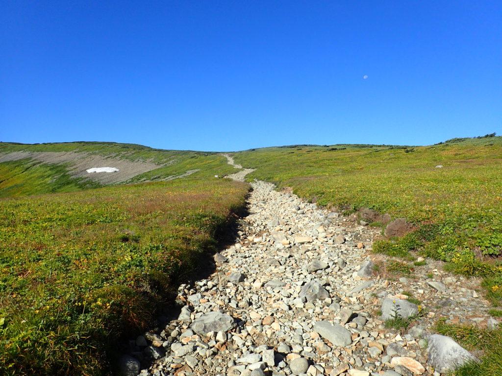北ノ俣岳山頂へと向かう登山道