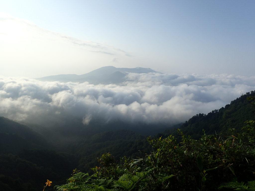 戸隠連峰の稜線から見る雲海