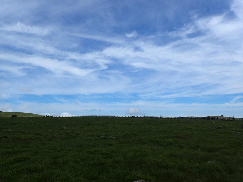 美ヶ原高原の牧草地