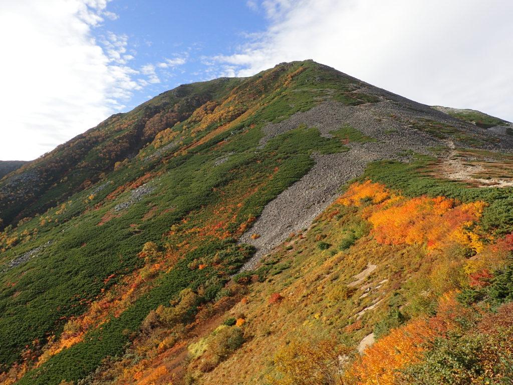 常念岳の紅葉
