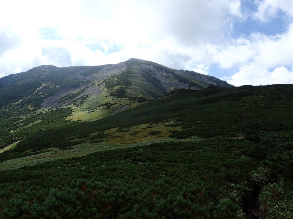黒部五郎岳山頂方向