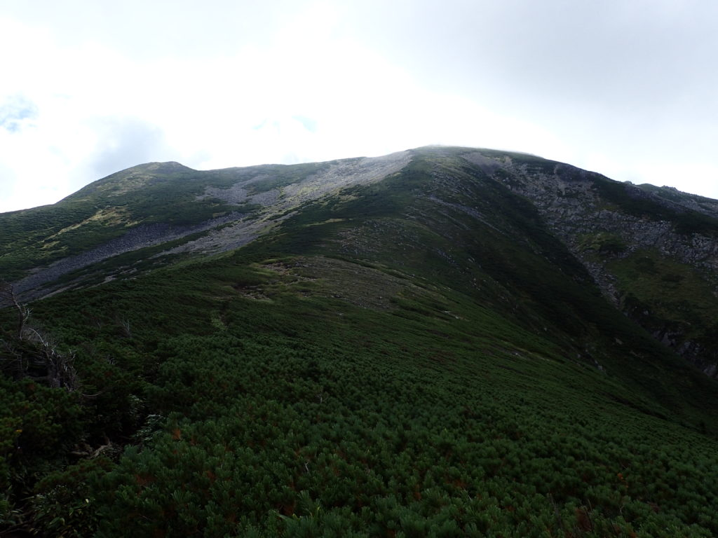 黒部五郎岳山頂方面