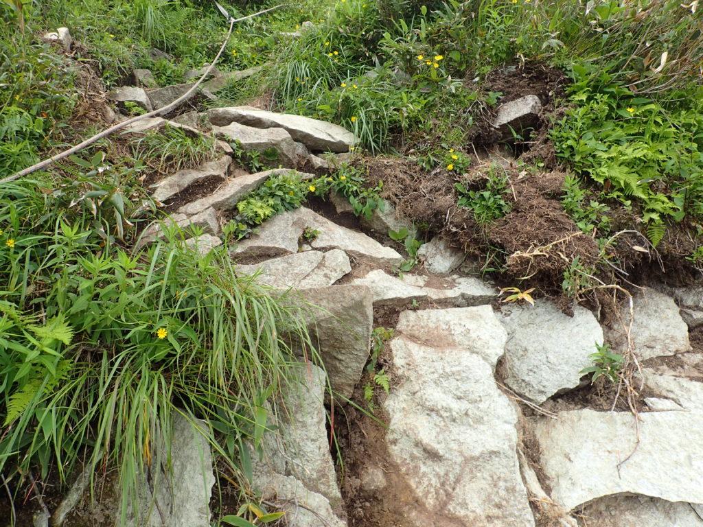 高妻山山頂直下の登山道