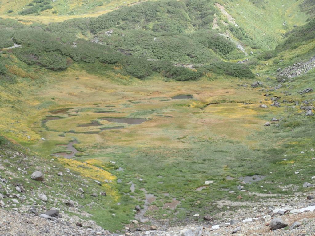 立山の池塘