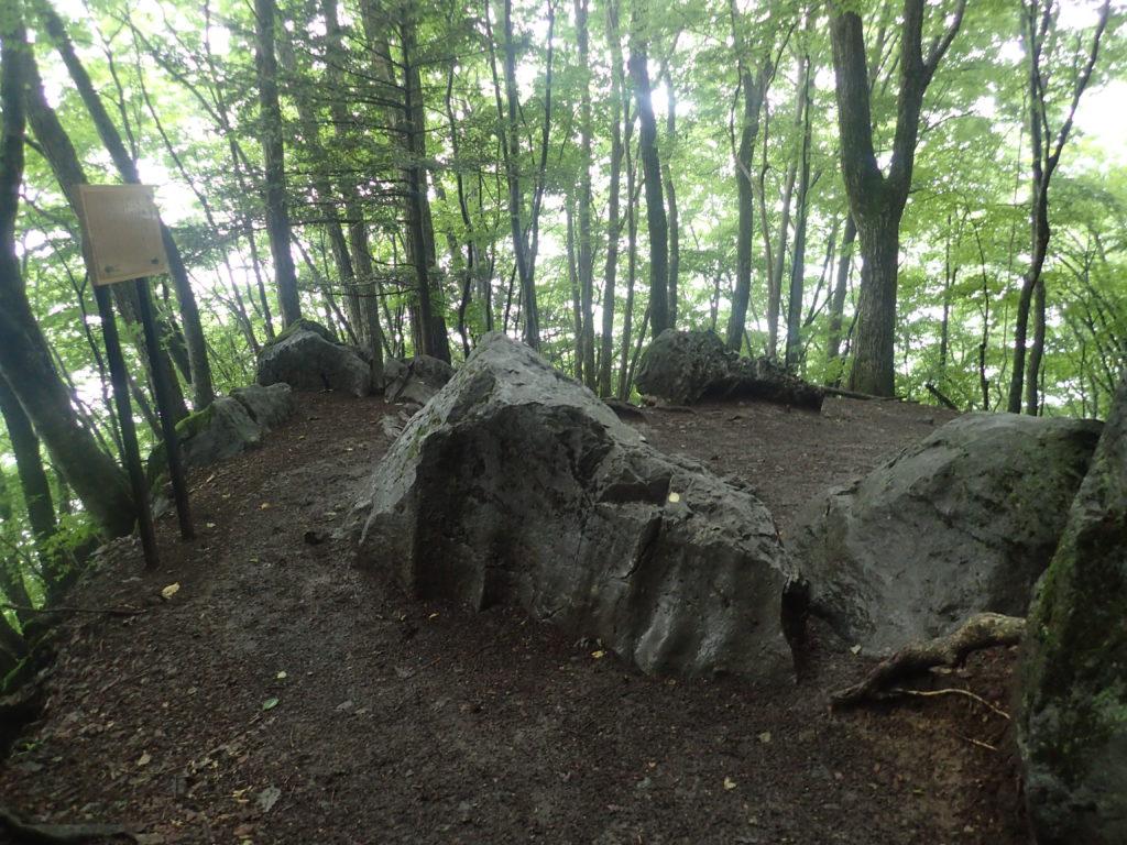 雲取山の風呂岩