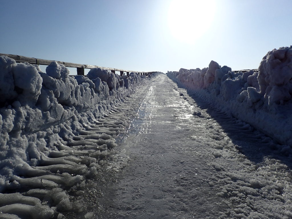 凍りついた美ヶ原高原の牧場の道
