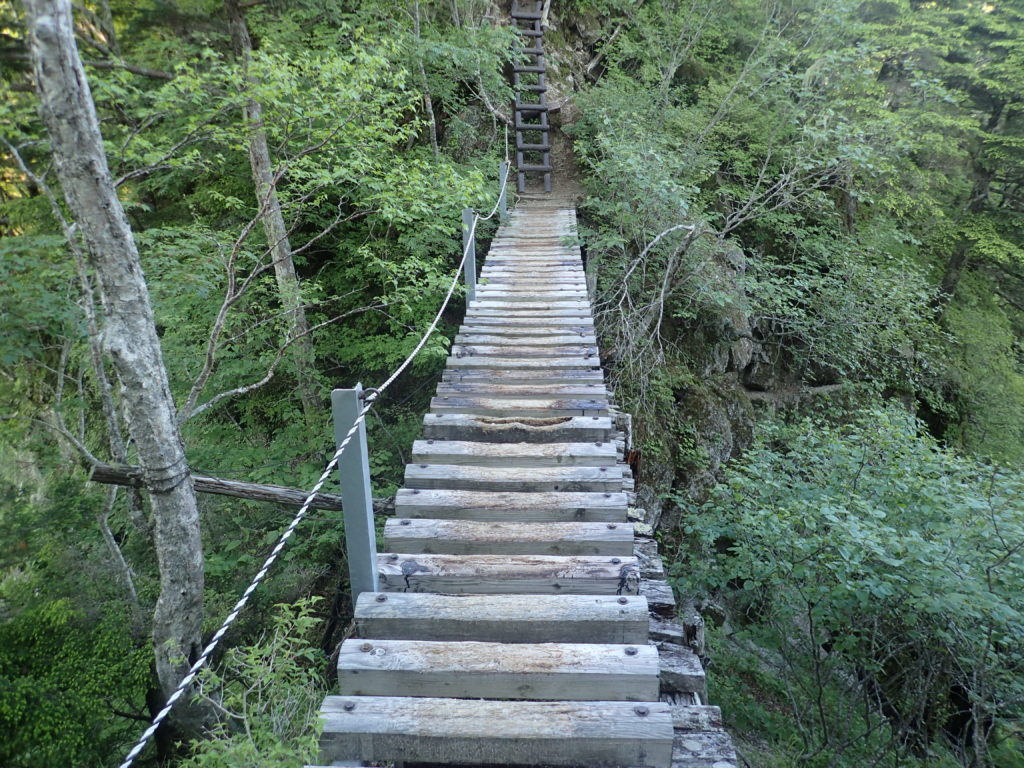 甲斐駒ヶ岳黒戸尾根ルートの木梯子