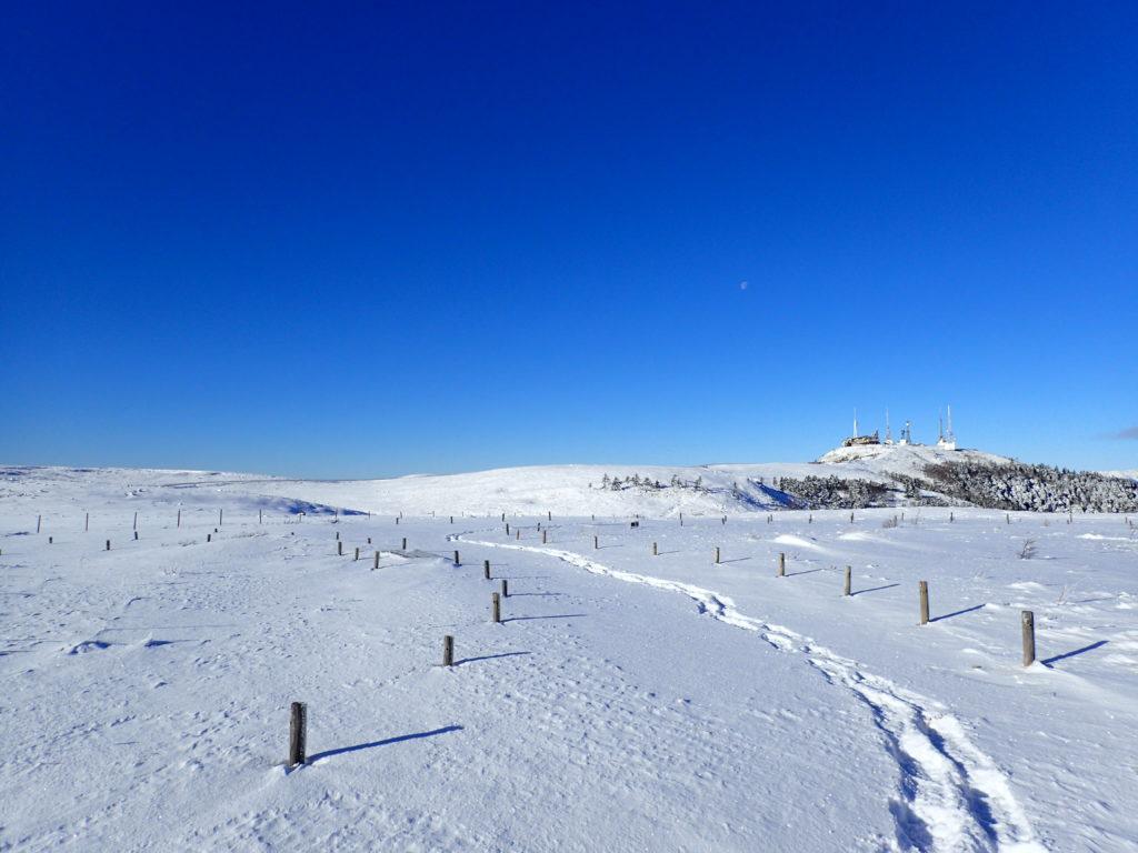 スノーシューで歩いた跡がある冬の美ヶ原