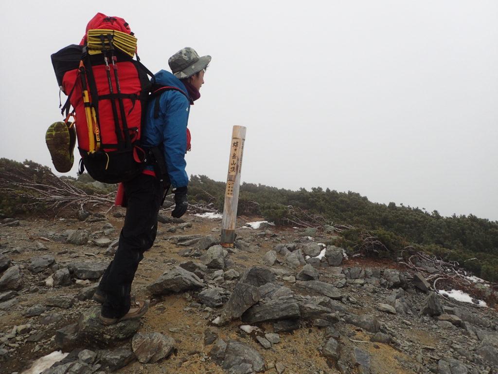 秋の終わりの冷たい風の吹く蝶ヶ岳山頂でモンベルの登山用レインウェアであるトレントフライヤーを着て記念撮影