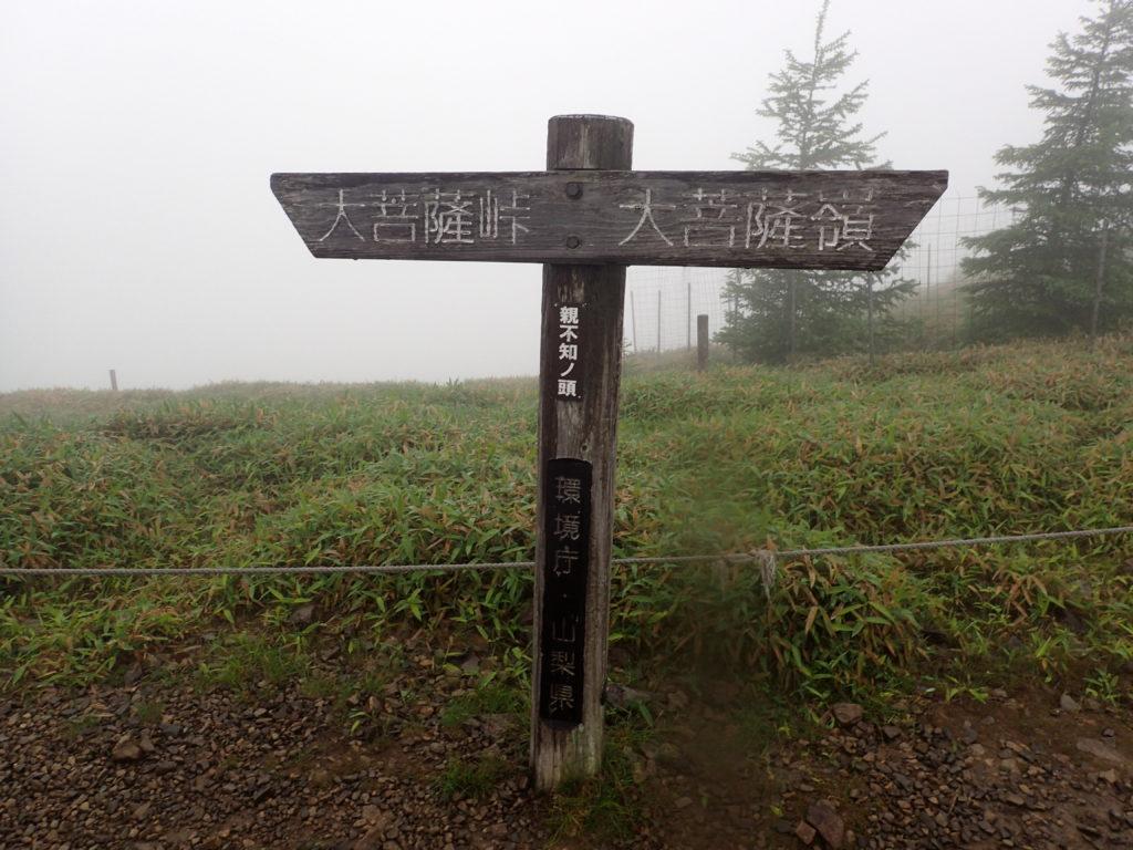 大菩薩嶺の上日川峠からのルートにある親不知ノ頭