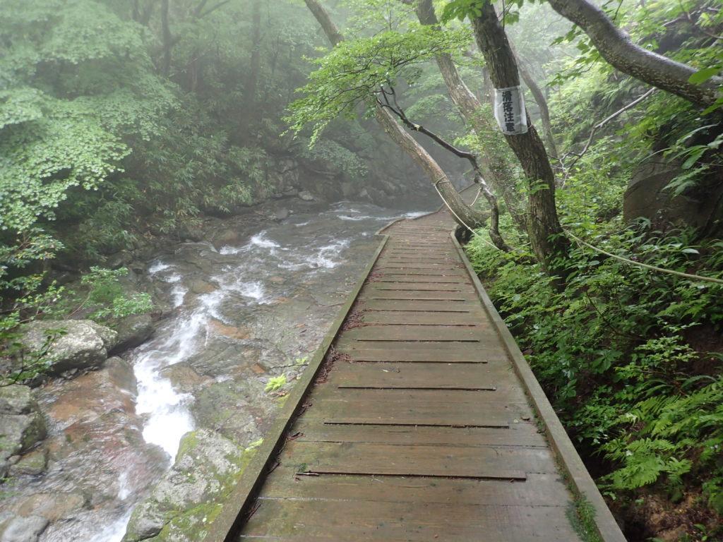 あだたら溪谷自然遊歩道の木道