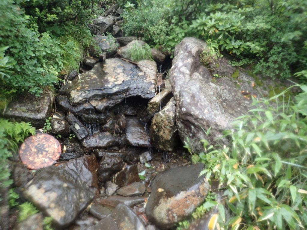 西吾妻山の大凹の水場