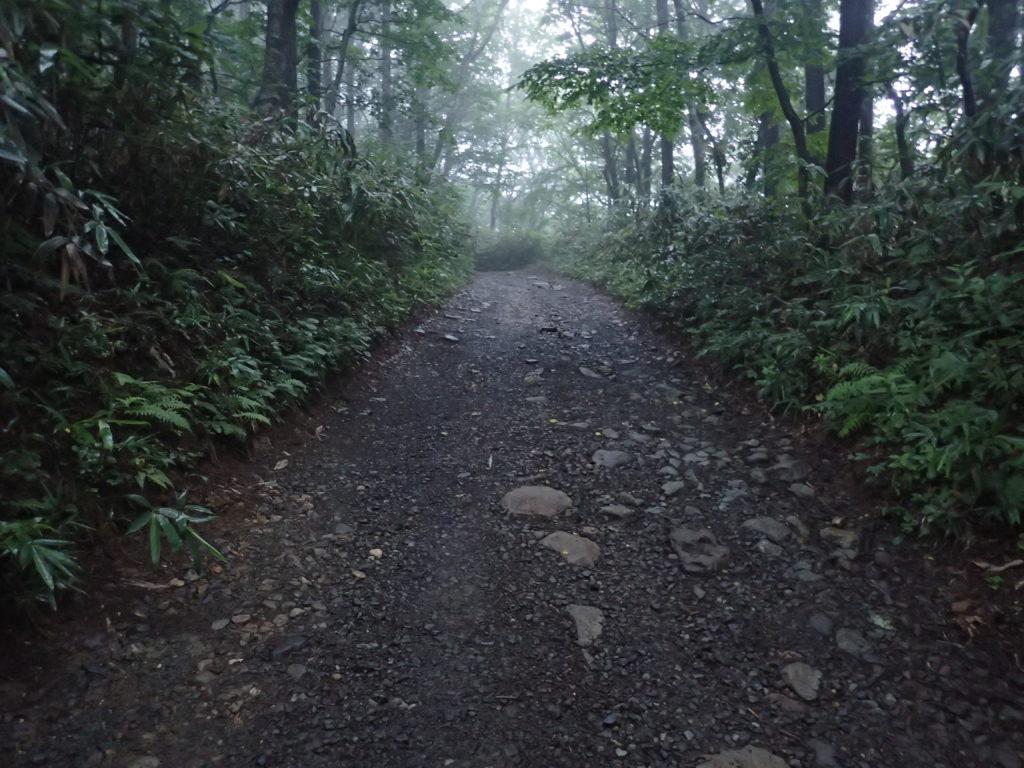 安達太良山の馬車道