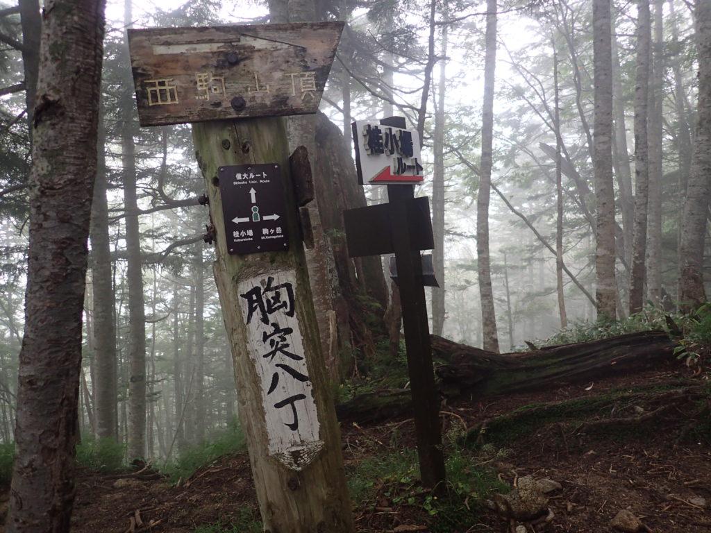 木曽駒ヶ岳の桂小場ルートの胸突八丁