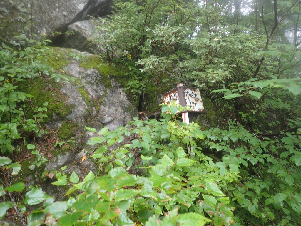 木曽駒ヶ岳の桂小場ルートの津島神社