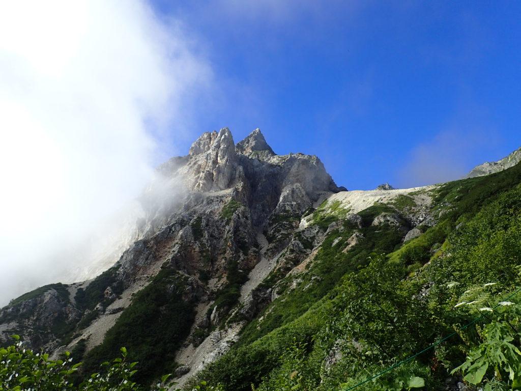 白馬岳の雪渓ルートから見上げる天狗菱