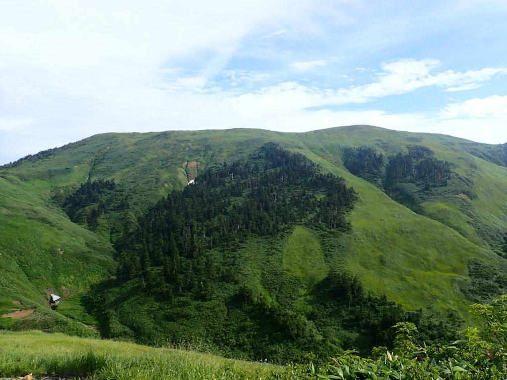 巻機山の山頂方向