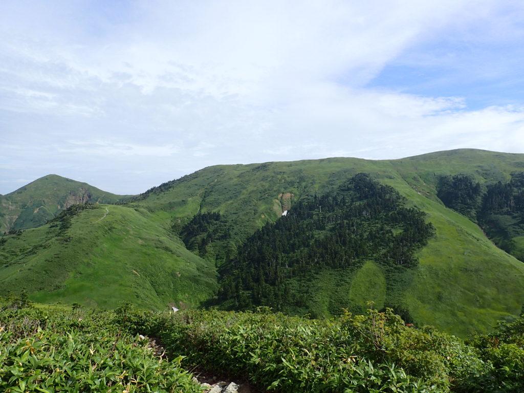 巻機山の稜線
